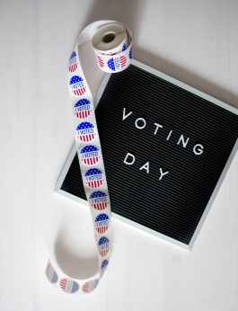 white and grey voting day sign