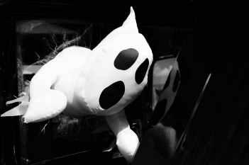 black and white blur close up dark
